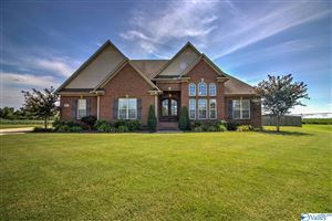 Photo of 13419 MORNING GLORY STREET, ATHENS, AL 35613 (MLS # 1126178)