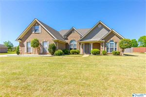 Photo of 24801 MAHALO CIRCLE, MADISON, AL 35756 (MLS # 1117179)