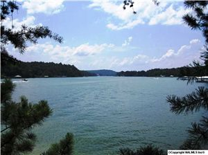Photo of COUNTY ROAD 295, CULLMAN, AL 35057 (MLS # 504180)