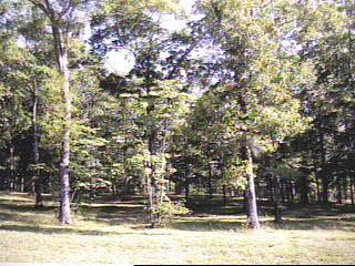 Photo of 119 HILLSDALE DRIVE, GURLEY, AL 35748 (MLS # 136232)