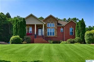 Photo of 112 BURWELL COVE DRIVE, HARVEST, AL 35749 (MLS # 1119292)