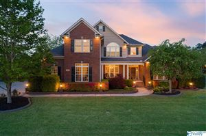 Photo of 101 ORTON SPRING COURT, HUNTSVILLE, AL 35806 (MLS # 1116299)
