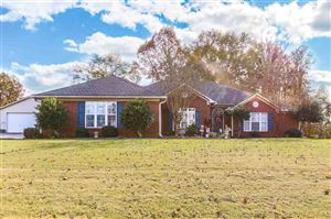Photo of 230 BLACKWATER DRIVE, HARVEST, AL 35749 (MLS # 1107334)