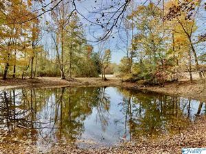 Photo of 824 Old Winchester Road, NEW MARKET, AL 35761 (MLS # 1130336)