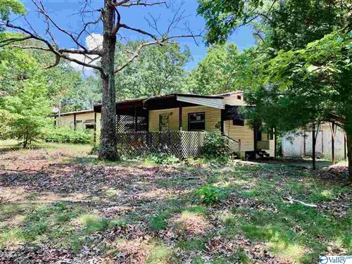 Photo of 1028 COUNTY ROAD 245, SCOTTSBORO, AL 35768 (MLS # 1147391)