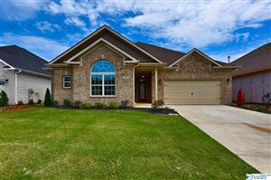 Photo of 106 SUMMER WALK LANE, HARVEST, AL 35749 (MLS # 1117395)