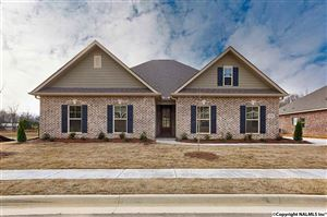 Photo of 7021 SE REGENCY LANE, GURLEY, AL 35748 (MLS # 1106409)