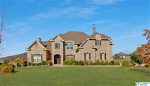 Photo of 7 WILLIAM WAY PLACE, GURLEY, AL 35748 (MLS # 1114437)
