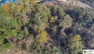 Photo of Lot 22 COUNTY ROAD 113, CULLMAN, AL 35057 (MLS # 1006446)