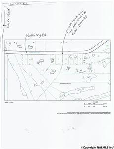 Photo of 0 MULBERRY ROAD, HAZEL GREEN, AL 35750 (MLS # 1087457)