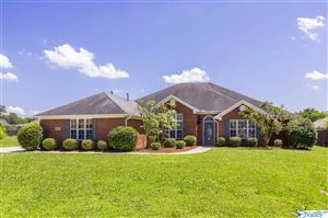 Photo of 29686 OXFORD CIRCLE, HARVEST, AL 35749 (MLS # 1119457)