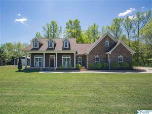 Photo of 158 ELKWOOD SECTION ROAD, HAZEL GREEN, AL 35750 (MLS # 1116501)
