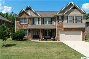 Photo of 102 AUDI COURT, HARVEST, AL 35749 (MLS # 1114519)