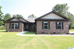 Photo of 100 WALKER HILL ROAD, MERIDIANVILLE, AL 35759 (MLS # 1115524)