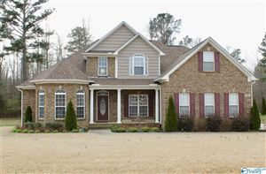 Photo of 130 CHERITA LANE, HARVEST, AL 35749 (MLS # 1113540)