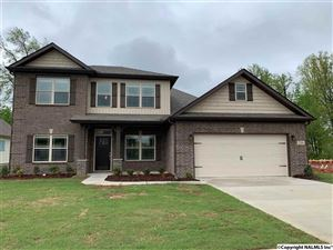 Photo of 216 LIZ LANE, HARVEST, AL 35749 (MLS # 1106564)