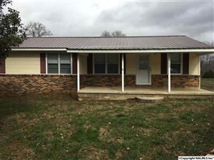 Photo of 29780 EASTER FERRY ROAD, LESTER, AL 35647 (MLS # 1087594)