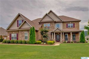 Photo of 3000 LAUREL COVE WAY, GURLEY, AL 35748 (MLS # 1123641)
