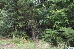 Photo of LOT #25 COUNTY ROAD 224, DUTTON, AL 35744 (MLS # 1123661)