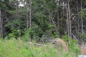 Photo of LOT #24 COUNTY ROAD 224, DUTTON, AL 35744 (MLS # 1123668)