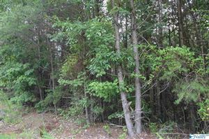 Photo of LOT # 23 COUNTY ROAD 224, DUTTON, AL 35744 (MLS # 1123670)