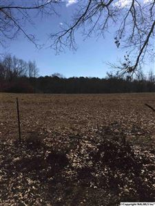 Photo of 0000 SNAKE ROAD, ATHENS, AL 35611 (MLS # 1086689)