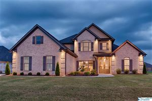 Photo of 121 STONY CROSSING ROAD, MERIDIANVILLE, AL 35759 (MLS # 1116738)