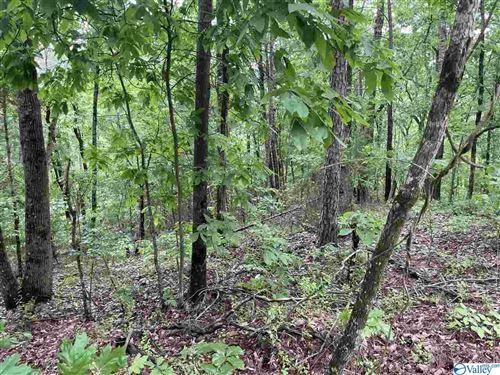 Photo of 1 Hillside Trail, Gadsden, AL 35901 (MLS # 1780738)