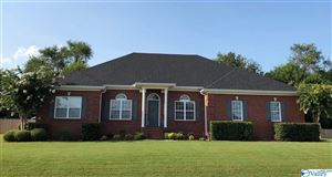 Photo of 107 FUTURITY WAY, MERIDIANVILLE, AL 35759 (MLS # 1116808)