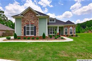 Photo of 7076 MEADOW WAY LANE, OWENS CROSS ROADS, AL 35763 (MLS # 1105879)