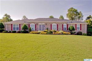 Photo of 141 THUNDERBIRD DRIVE, HARVEST, AL 35749 (MLS # 1128915)