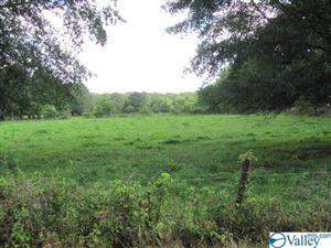 Photo of BOBO SECTION ROAD, HAZEL GREEN, AL 35750 (MLS # 1122917)