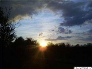 Photo of BLOWING CAVE ROAD, GURLEY, AL 35748 (MLS # 316940)