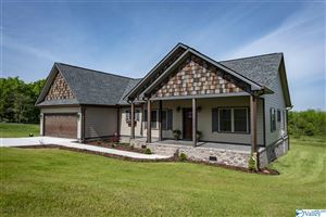 Photo of 167 COUNTY ROAD 1010, FORT PAYNE, AL 35968 (MLS # 1116967)