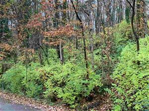 Photo of 2208 COLICE ROAD SE, HUNTSVILLE, AL 35801 (MLS # 1107978)