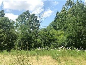 Photo of 2002 South Bridgeport, Indianapolis, IN 46234 (MLS # 21655487)