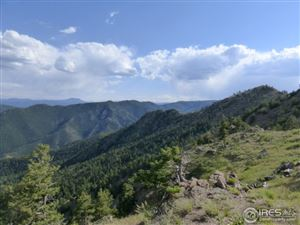 Photo of 1820 County Road 87J, Jamestown, CO 80455 (MLS # 824208)