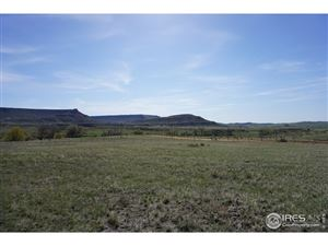 Photo of 0 Red Mountain Rd, Livermore, CO 80536 (MLS # 866226)