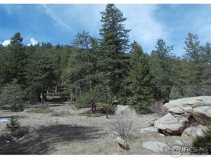 Photo of 0 Cedar Dr, Lyons, CO 80540 (MLS # 816300)