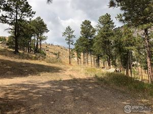 Photo of 529 Skyline Dr, Drake, CO 80515 (MLS # 862372)