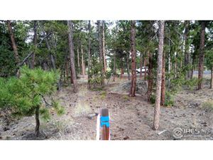 Photo of 2130 Fox Acres Dr E, Red Feather Lakes, CO 80545 (MLS # 860404)
