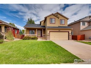 Photo of 1617 Daily Dr, Erie, CO 80516 (MLS # 894523)