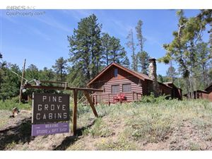 Photo of 60 County Road 90, Allenspark, CO 80510 (MLS # 801525)