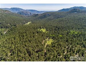 Photo of 575 Spruce Dr, Lyons, CO 80540 (MLS # 870566)