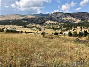 Photo of 1678 Palisade Mountain Dr, Drake, CO 80515 (MLS # 861603)