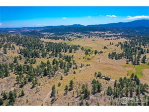 Photo of 0 County Road 74E, Livermore, CO 80536 (MLS # 839631)