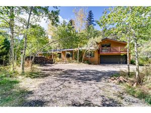 Photo of 746 Riverside Dr, Lyons, CO 80540 (MLS # 896634)