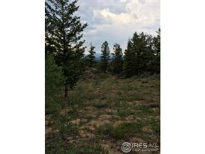 Photo of 0 Cougar Run, Nederland, CO 80466 (MLS # 795650)