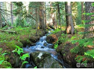 Photo of 8683 Cub Creek Trl, Conifer, CO 80433 (MLS # 870789)