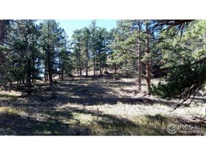 Photo of 345 Green Pine Ct, Estes Park, CO 80517 (MLS # 834841)